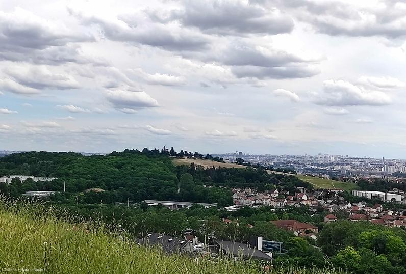 """Le samedi 18 septembre 2021, le CAUE du Val-d'Oise vous invite à une balade """"vue d'en haut"""" à Argenteuil, une lecture due paysage accompagnée des paysagistes du CAUE du Val-d'Oise !"""