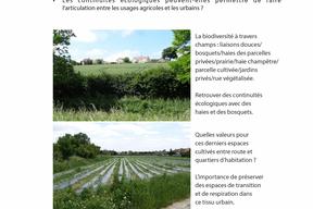 CAUE91-CARNET_TERRITOIRE_2-pg17.jpg