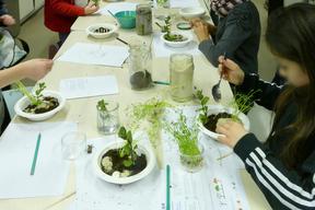 Les enfants ont réalisés des mini-jardins à partir de matériaux perméables